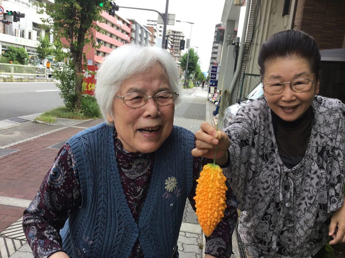【長居公園】ゴーヤ収穫祭