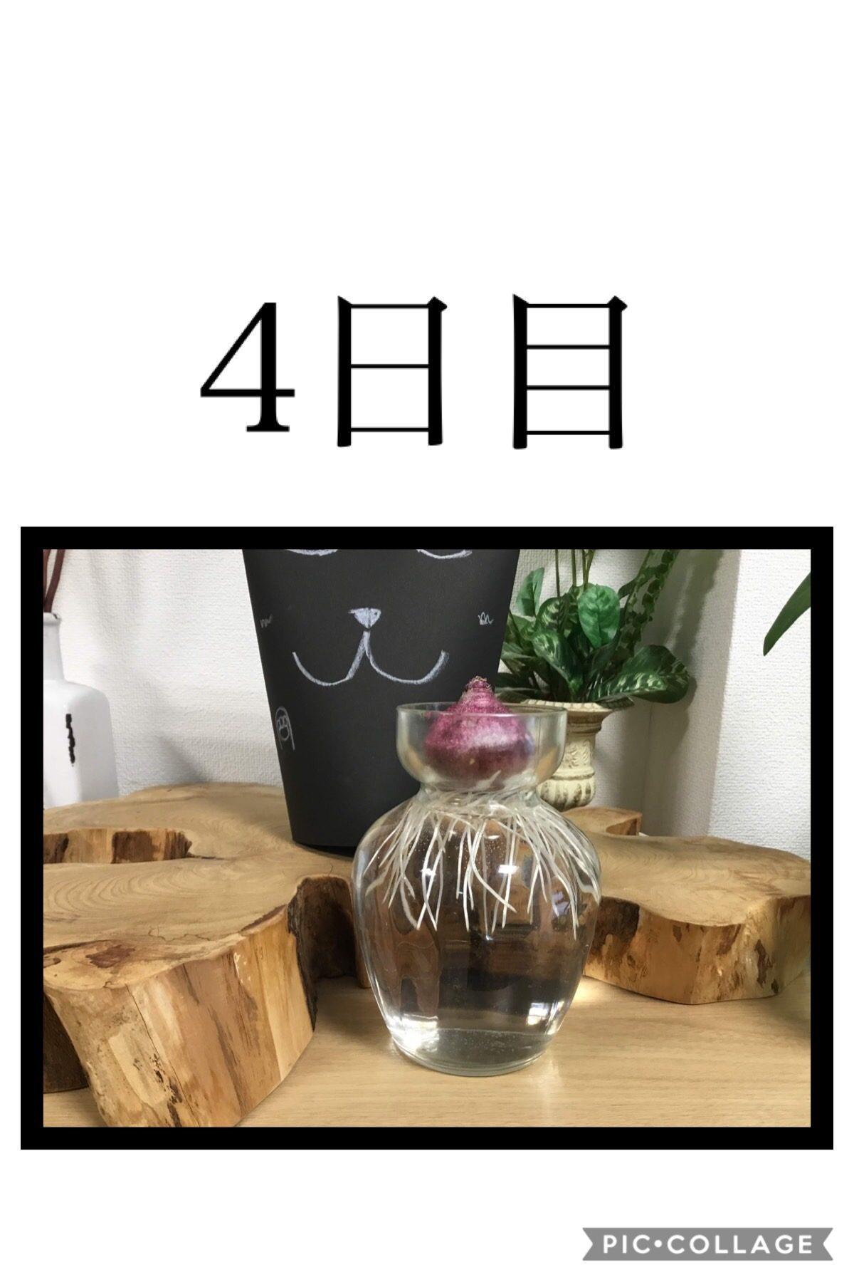 【門真】成長日記③