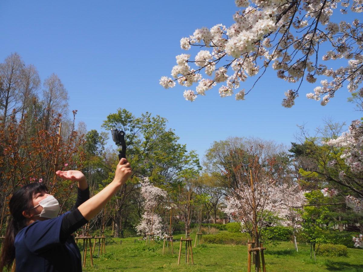 【長居公園】春のお花見音楽会〜中継先では…〜